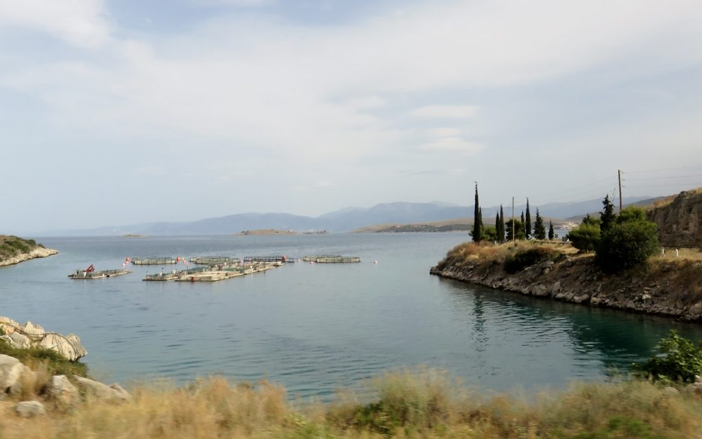 On The Road in Greece: Fisheries of Nafpaktos, Greece