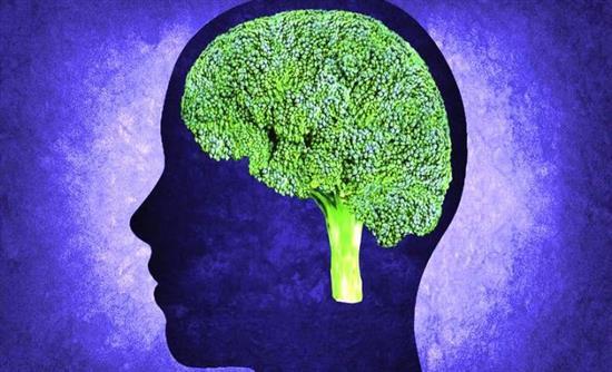 Επτά συμβουλές για υγιή εγκέφαλο έως τα γεράματα