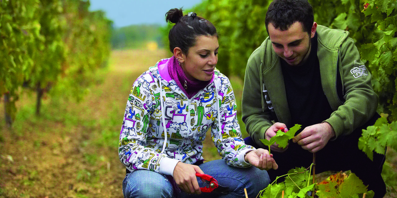 Rutgers Receives $27 Million to Help Revitalize Agriculture in Greece