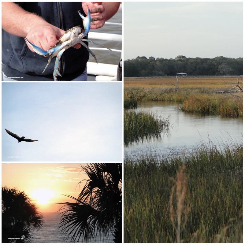 Low Country of Georgia